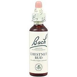 Flores De Bach Chestnut Bud (Brote de Castaño) 20 Ml