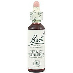 Flore De Bach Star of Bethlehem (Leche de Gallina) 20 Ml