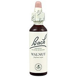 Flores De Bach Walnut (Nogal) 20 Ml